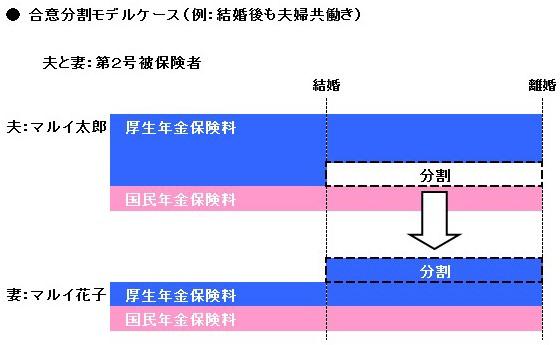 合意分割モデルケース